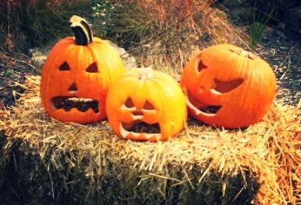 pumpkintrio